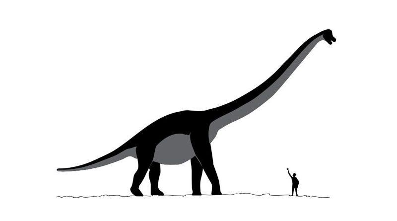 Existem evidências históricas da coexistência entre humanos e dinossauros?