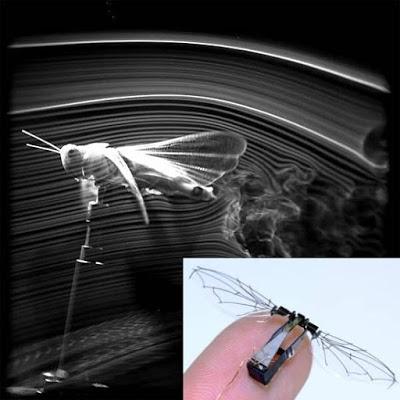 Imagem fonte: Bol Notícias/ Inovação Tecnológica