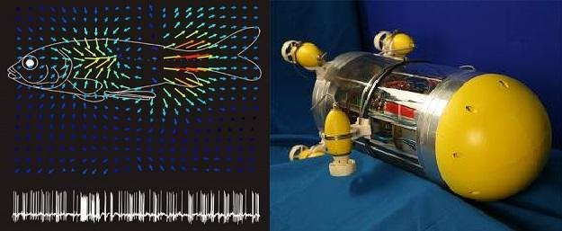 Imagem fonte: Inovação Tencológica