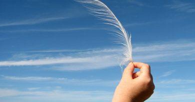 penas ao vento