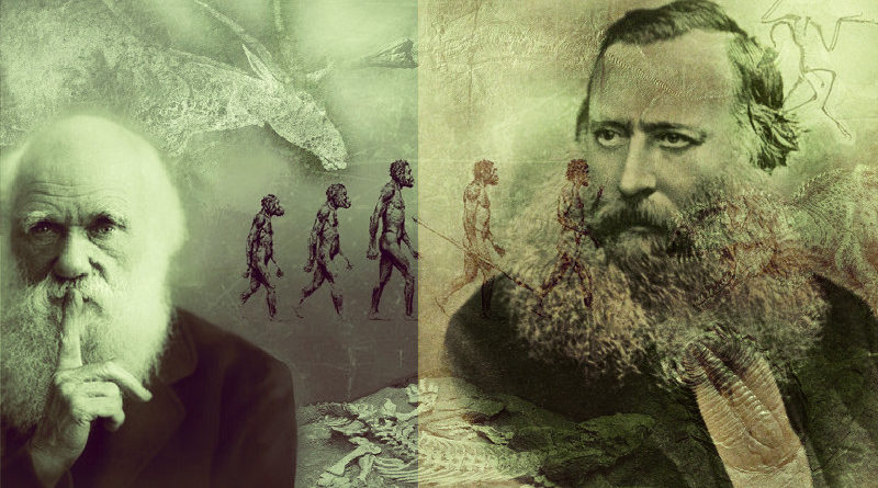 Criacionista sugeriu a seleção natural antes de Darwin